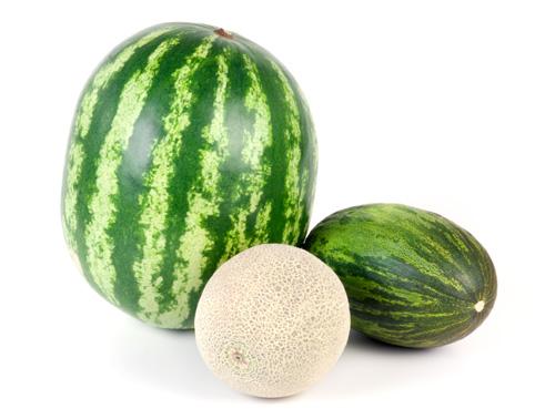 sb-12-sandia-melon