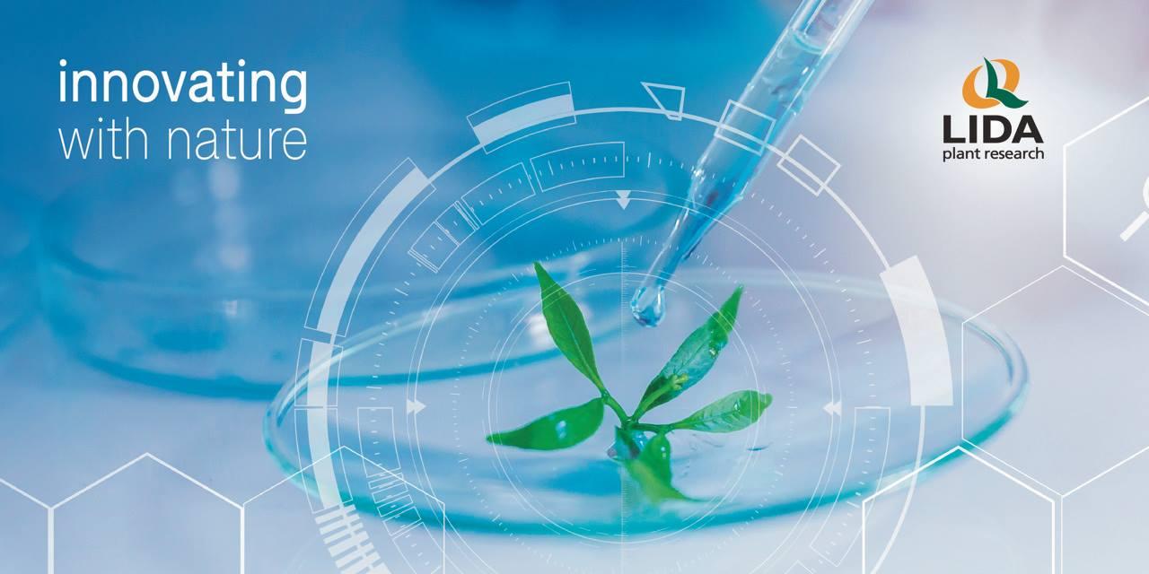 Las Fitovacunas® activan de manera eficiente la inmunidad innata de las plantas