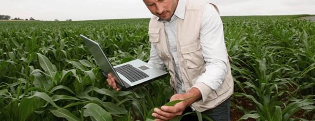 Ingenieros agrónomos y agrícolas piezas clave para el uso sostenible de fitosanitarios