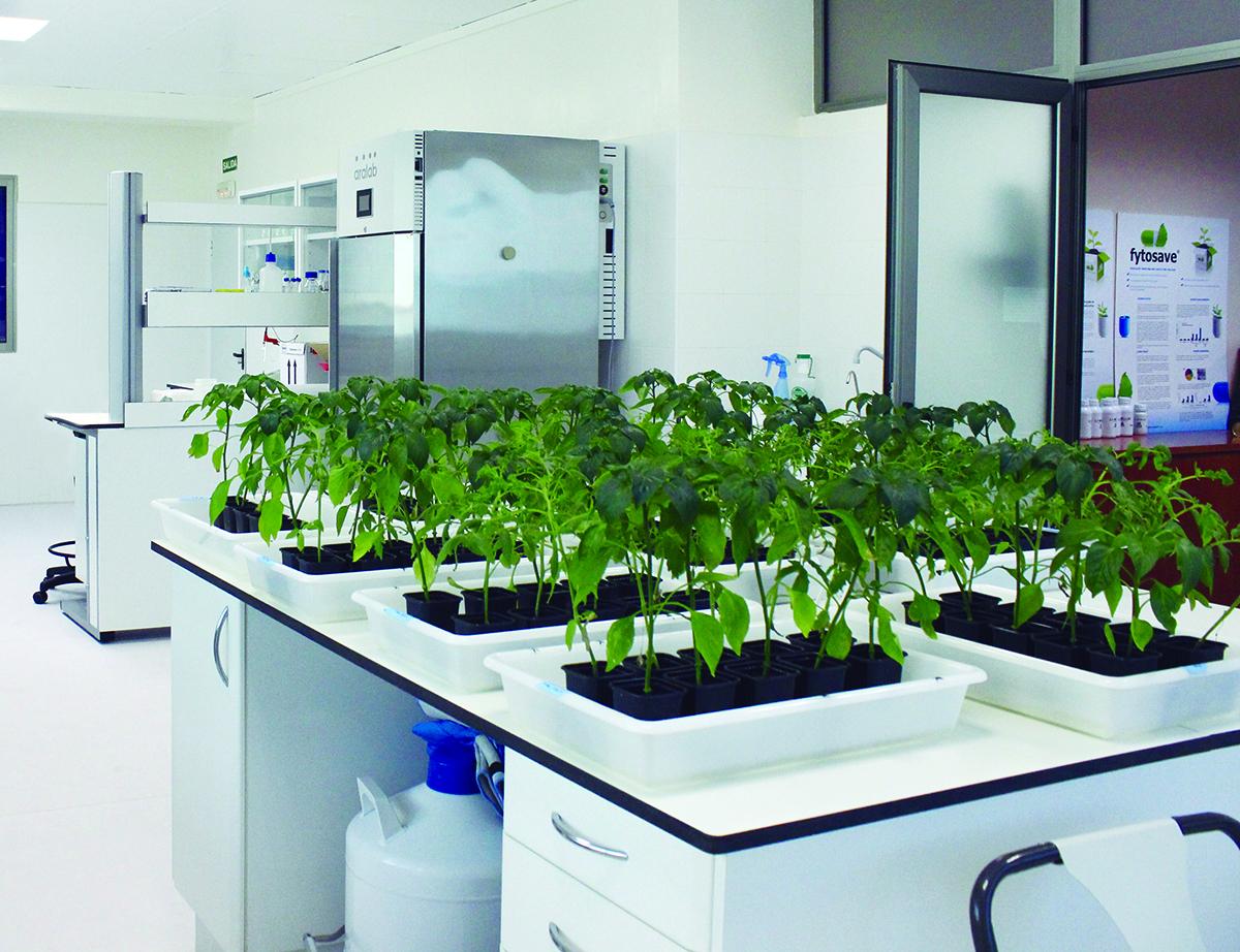 4º Biostimulants World Congress: La agricultura pasa por la biotecnología