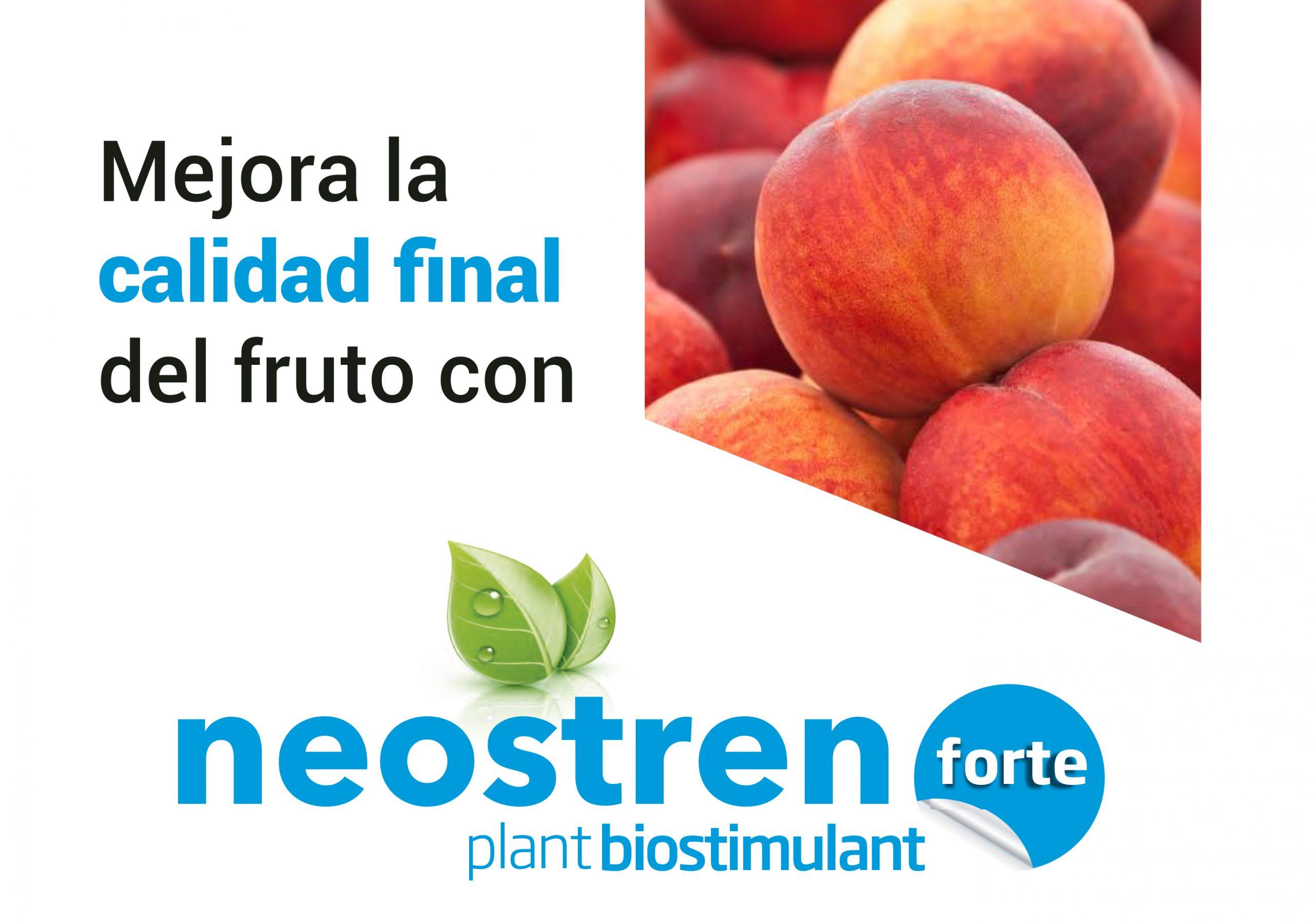 Mejora la calidad del fruto con Neostren Forte
