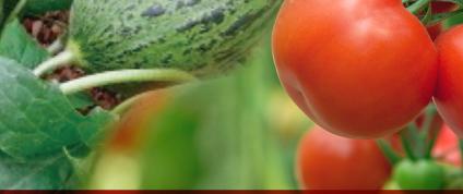 Más de 90 participantes asisten a la conferencia online 'Fisiología y nutrición de los frutos' organizada por LIDA
